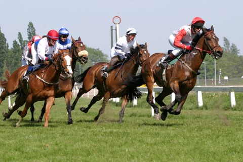 Corporate Race Night Hire